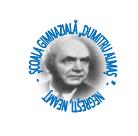 """ŞCOALA GIMNAZIALĂ """"DUMITRU ALMAŞ """"COMUNA NEGREŞTI, JUDEŢUL NEAMŢ"""